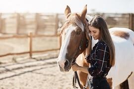 Tierfotos und Tierfotografie